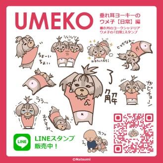 ume_stamp